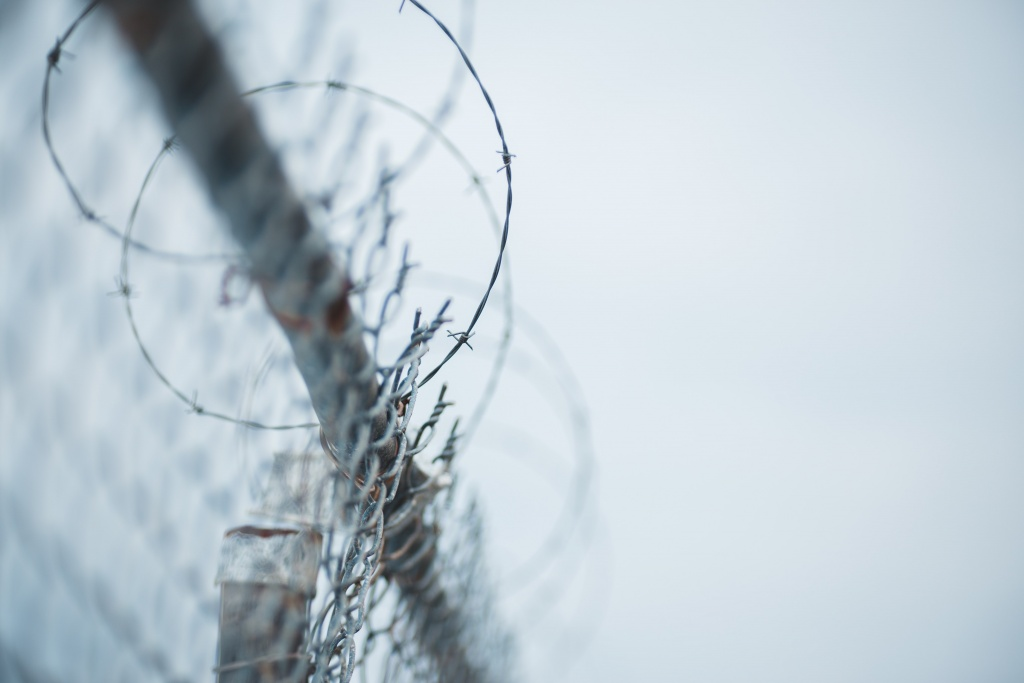 Silver barbed wire against a grey sky.
